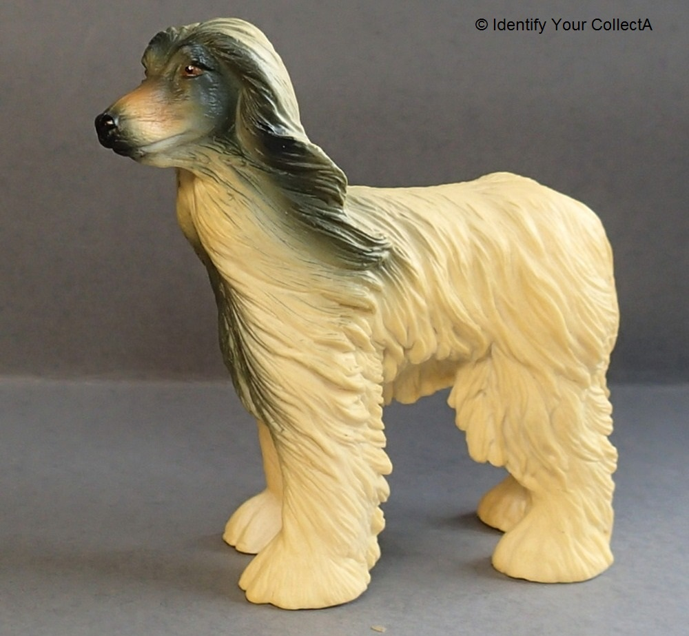 How to Identify an Afghan Hound